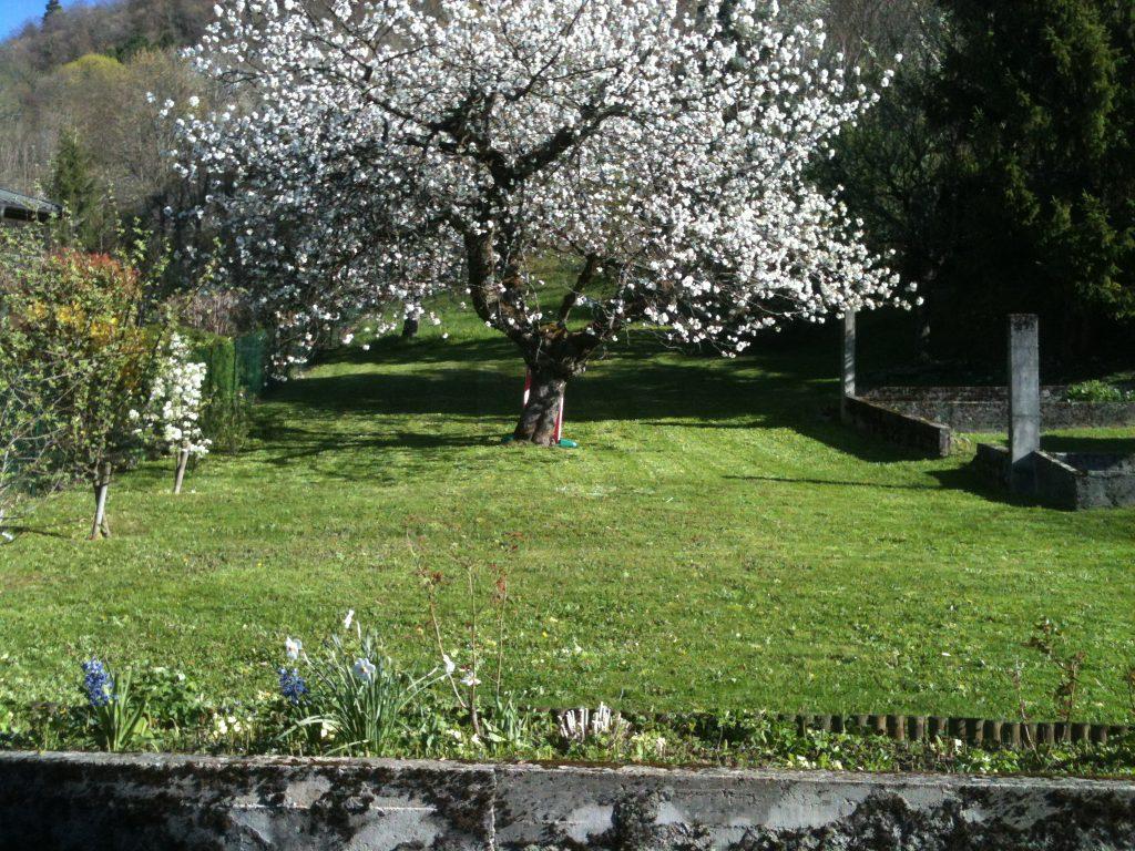 les jardins d 39 orion paysagiste en haute savoieles